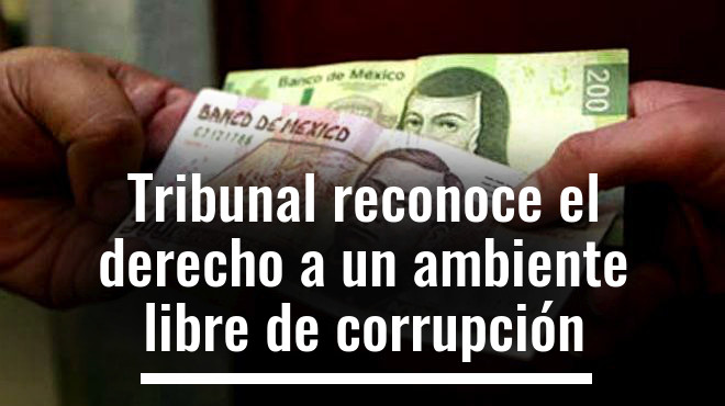 Tribunal reconoce el derecho a un ambiente libre de corrupción