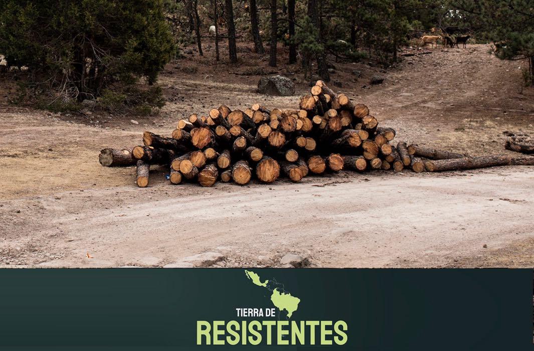 Tierra de resistentes: Sin territorio no somos nada
