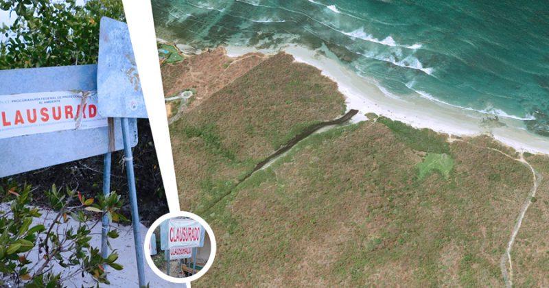 Procuradora ambiental de la CDMX  privatizó playa cuando fue funcionaria federal